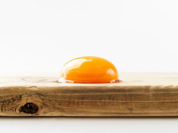 卵黄の秘めたる力